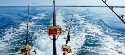 Примерный бюджет на организацию морской рыбалки в Сочи