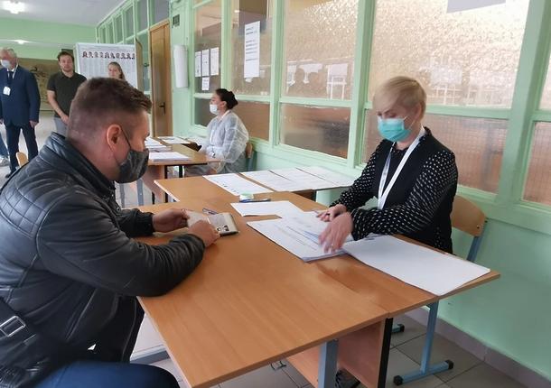 12% за 1-й день голосования превысила явка на выборах в Московской области